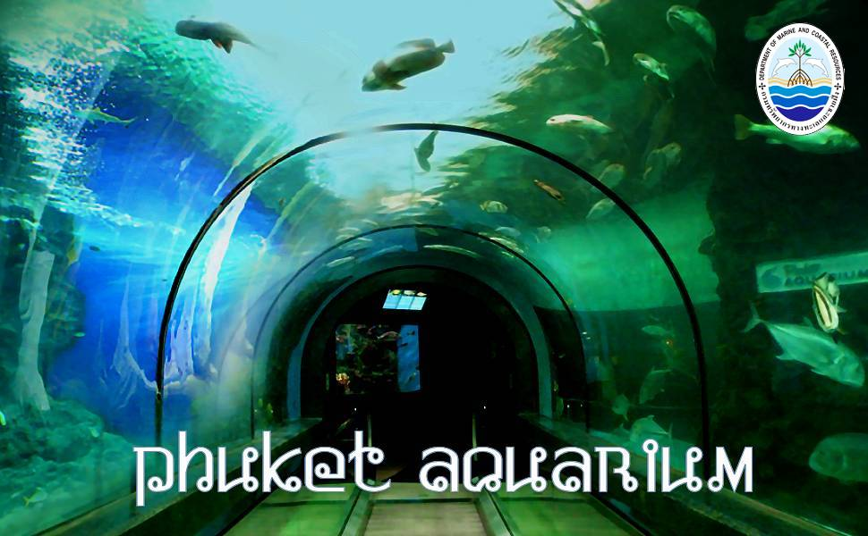 Phuket Aquarium in Panwa (Phuket)